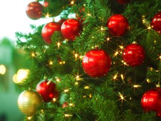 一足早くクリスマス!ミニディナーコース付♪チェックイン13:00 チェックアウト12:00(1泊2食)